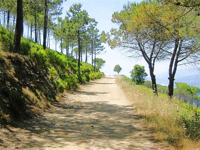 Wanderweg am Monte Calamita